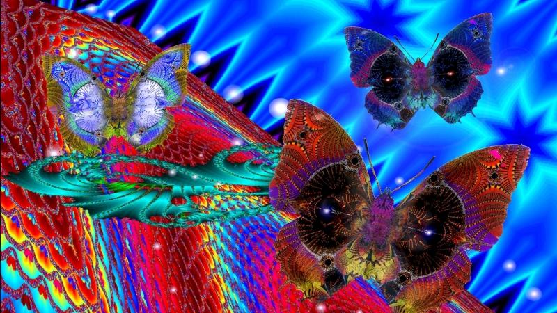 5 Farfalle web