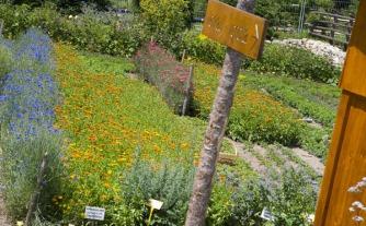 giardino-derbe