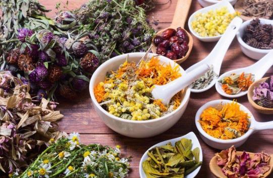 Medicinal-Herbs-Plants-Custom-900x586