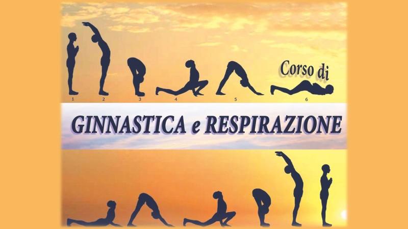 banner ginnastica 01