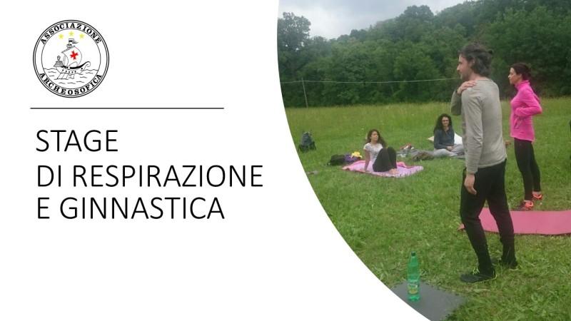 Banner ginnastica 001