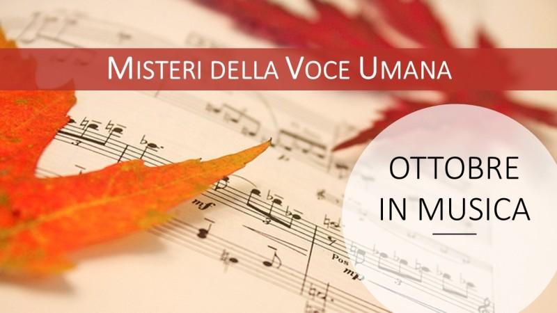 Banner misteri voce 001