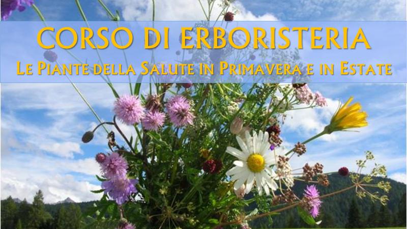 Banner Erboristeria base 001