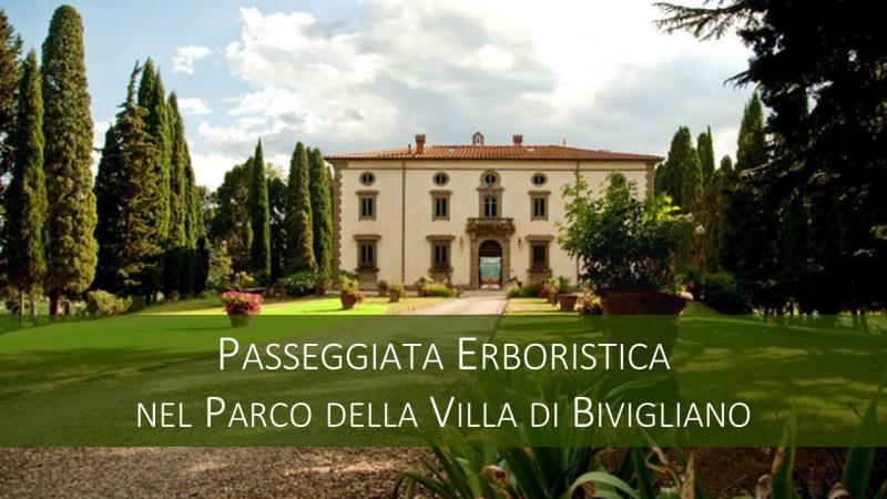 Banner Bivigliano 2019 002