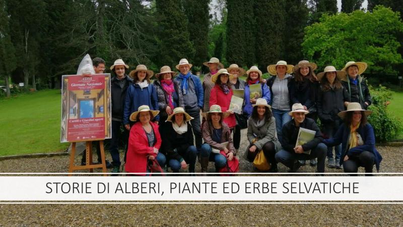 Banner Bivigliano 2019 Storie 001